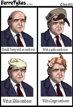 Donald Trump Hair pieces.