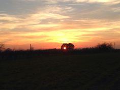 Sunset Schriese