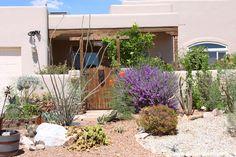 Garden Landscape Ideas - Pictures of Landscape Designs in the Desert Southwest - SunGardensInc.com