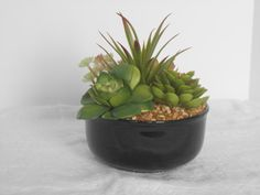 Check out this item in my Etsy shop https://www.etsy.com/listing/291520821/floral-succulents-in-a-black-ceramic