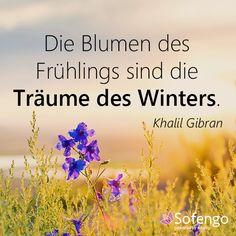 Die Blumen des Frühlings sind die #Träume des Winters. Khalil Gibran #Zitat #Frühling