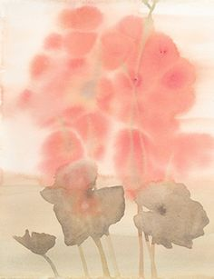 Stacey Vetter, California Native Plant Series, Alum Root, Heuchera maxima, watercolor on paper.
