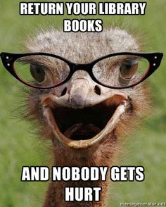 Judgemental Bookseller Ostrich - Return your library books and nobody gets hurt