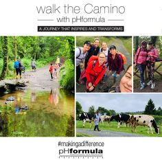 The fourth day of the pHformula Walk the Camino! We walked 15 km yesterday from Melida to Arzua. The walk through the forest was breathtaking. The Camino has so much love and spirit, you experience it everyday along the way. Motor Neuron, In Remembrance Of Me, Russia Ukraine, Make A Difference, The Camino, Rite Of Passage, Create Awareness, So Much Love, Losing Her