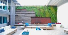 Bella Builders Living Wall with fire pit.