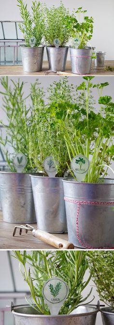 {DIY} Des jolis porte nom pour mes plantes Aromatiques en Plastique Dingue - Plastique Fou