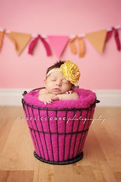 cute photo, she looks like a little cupcake!