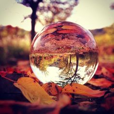I've seen numerous pictures where the photographer uses a glass ball and rotates the image to create the illusion of the outer image being flipped upside down. This effect is so fascinating to me and I would love to be able to create something like this Glass Photography, Reflection Photography, Macro Photography, Creative Photography, Amazing Photography, Landscape Photography, Indoor Photography, Photography Ideas, Water Art