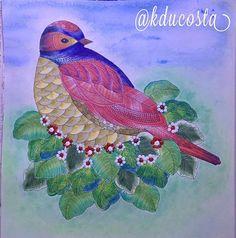 Animal Kingdom Animalkingdom Reinoanimal Milliemarotta Bird Passaro Paraisotropical Tropicalworld