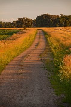 Old country road… Minnesota