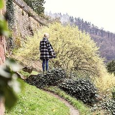 Exploring castle walls last weekend in Heidelberg...