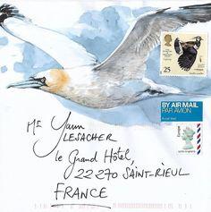 Mail Art by Yann Lesacher, Bretagne Flor Magnolia, Watercolor Bird, Watercolor Paintings, Art Postal, Art Impressions Stamps, Decorated Envelopes, Letter Art, Letters, Envelope Art