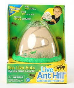 Observe ants digging an elaborate maze of tunnels with this awe-inspiring habitat, designed to mimic a real anthill. Flexible plastic replicas of eggs, larva, pupa and adult ants are included to teach little ones the stages of ant development.Redeem the included certificate on Insect Lore's website to have a vial of ants shipped to you directly.Includes ant hill, four replica figurines and...