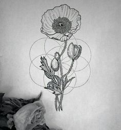 Poppy Geometric tattoo                                                       …
