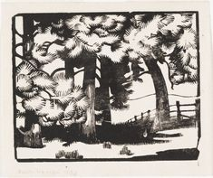 This rare wood engraving by Nora Heysen, painter and draughtswoman, is the only impression known, and was made the year of her first solo exhibition in The subject is the trees surrounding her home 'The Cedars' at Hahndorf in . Light Of Life, Paper Dimensions, Wood Engraving, Australian Artists, Printmaking, Screen Printing, Moose Art, Art Gallery, Drawings