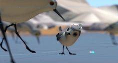 Piper-Pixar-Short-Film-Vfx-Breakdown-2.jpg (1024×552)