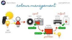 Back to Basics (Episode 9): Colour Management