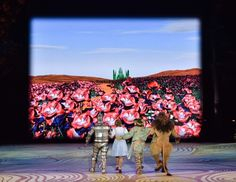 Danielle Bowen stars as Dorothy in the St. Wizard Of Oz Musical, Yellow Brick Road, The St, St Louis, Musicals, It Cast, Watch, Painting, Art
