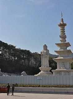 donghwasa buddha temple daegu