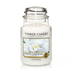 White Gardenia - Candles - Yankee Candle