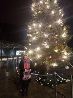 Harry Potter Tour, Christmas Tree, Tours, Holiday Decor, Home Decor, Teal Christmas Tree, Decoration Home, Room Decor, Xmas Trees