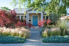 drought tolerant gardens los angeles - Google Search