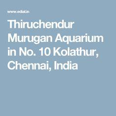 Thiruchendur Murugan Aquarium in No. 10 Kolathur, Chennai, India