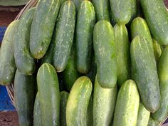 13 Uses for Cucumbers That Will Amaze .grubs and slugs ruining your planting beds? Place a few slices in a small pie tin and your garden will be free of pests all season long. The chemicals in the cucumber react with the aluminum to give off a scent undetectable to humans but drive garden pests crazy and make them flee the area.