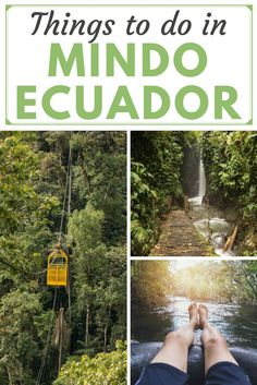Top things to do in Mindo Ecuador. Trekking in the Mindo Cloud Forest, where the beautiful Mindo Ecuador Butterflies fill the sky. For adventure in Mindo Ecuador South America, go tubing on the Rio Mindo, or zip-lining above the Mindo Cloud Forest. But the ultimate treat is tasting the Mindo Chocolate, all produced locally in Mindo Ecuador. Read all this in our Mindo Ecuador Travel Guide.