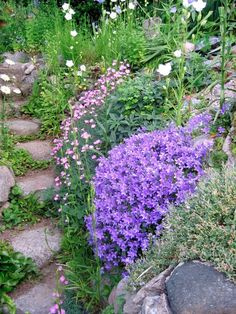 Murklocka - Sök på Google Cottage In The Woods, Creepers, Plants, Inspiration, Google, Gardens, Round Round, Nuthatches, Biblical Inspiration