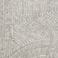 The Fossil porcelain tile collection revisits the prehistoric imprints left by plants and animals in rock formations, designed as ornamental patterns.