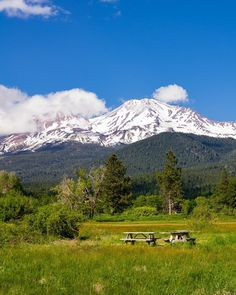 Mt Shasta with picnic tables in a park. Mount Shasta, California. Fine Art Landscape Photography Print for Home Decor Wall Art. View of Mt Shasta showing picnic tables in a park. Mount Shasta, California ~~ SELECT DESIRED SIZE USING THE OPTIONS BUTTON ABOVE ADD TO CART. Available in: 5x7, 8x10, 11x14, 12x18, 16x24, 20x30, 24x36.