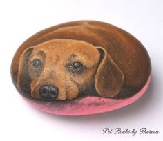 images of dog painted pebbles - Google Search