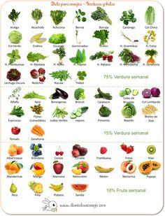 Verduras y frutas para la dieta de los conejos