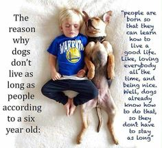 So true! For #dogs and all #animals.  #HappyAlert via @HappyHippoBilly