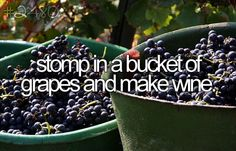 ....or grape juice!