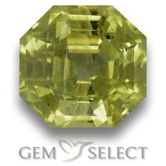 GemSelect features this natural untreated Apatite from Madagascar. This Green Apatite weighs 4.5ct and measures 8.9 x 8.6mm in size. More Asscher Cut Apatite is available on gemselect.com #birthstones #healing #jewelrystone #loosegemstones #buygems #gemstonelover #naturalgemstone #coloredgemstones #gemstones #gem #gems #gemselect #sale #shopping #gemshopping #naturalapatite #apatite #greenapatite #octagongem #octagongems #greengem #green Green Gemstones, Loose Gemstones, Natural Gemstones, Buy Gems, Gem Shop, Asscher Cut, Madagascar, Gemstone Colors, Shades Of Green