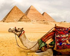 Google Image Result for http://www.destination360.com/africa/egypt/images/s/egypt.jpg