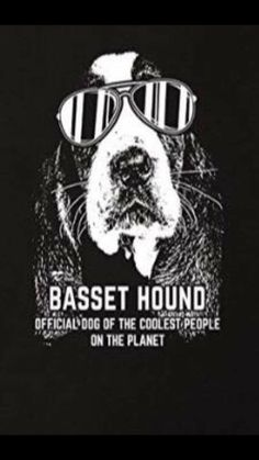 Basset Hound Funny, Funny Pugs, Hounds Of Love, Dumb Dogs, Funny Drawings, Beagle Puppy, Labrador Retriever Dog, Bull Terrier Dog, Dogs And Puppies