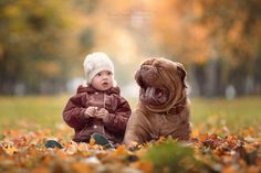 """= Wonderment = (- """"Tsypa, necessary to cover the gaping mouth with his paw!"""") from project """"Little Kids and Their Big Dogs"""""""