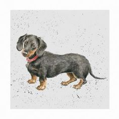 Wrendale Designs by Hannah Dale Dachshund Greeting Card - Set of Three Watercolor Animals, Watercolor Art, Dachshund Art, Dachshund Gifts, Wrendale Designs, Dog Cards, Animal Drawings, Dog Life, Pet Portraits
