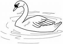 Printable bird swan coloring pages for kids. bird swan coloring pages print out worksheets.swan coloring pages for preschools clip art. Free Kids Coloring Pages, Colouring Pages, Printable Coloring Pages, Coloring Pages For Kids, Coloring Books, Coloring Sheets, Swan Pictures, Abstract Coloring Pages, Animals
