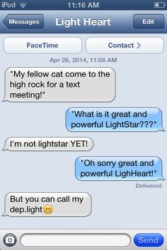 Warrior cats having a text meeting!!!! Lol