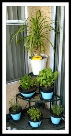 Robyn's Hobbies: Cooking, Gardening & More!: DIY: Herb Garden Chalkboard Pots