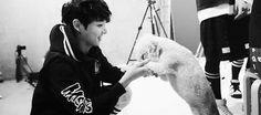 Libra: Você quando brinca com um cachorrinho (ou com qualquer outro animal fofinho)