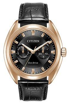 Citizen Citizen Eco-Drive  Paradex BU4013-07H Paradex