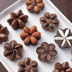 Chocolate Candy Fruit & Nut Flowers - Candy clusters are so much prettier when you mold them using Candy Melts Candy and the Daisy Silicone Mold! Each candy or nut topping is kept in its own petal shape for an easy-to-make, perfectly-formed flower.