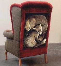 efedra:  Fox Chair by Alannah Currie & Jane Howarth