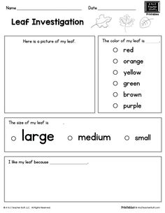 {FREE printable} Leaf Investigation Printable Page Science Worksheets, Science Lessons, Science Activities, Printable Worksheets, Educational Activities, Free Printable, Printables, Fall Preschool, Kindergarten Science