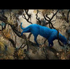 Ilustración de El libro de la selva de Rudyard Kipling realizada por Gabriel Pacheco. Editorial Sexto piso.